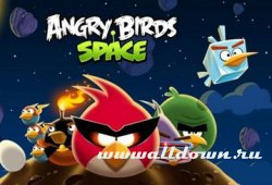 Angry Birds Space - v.0.01 (1)